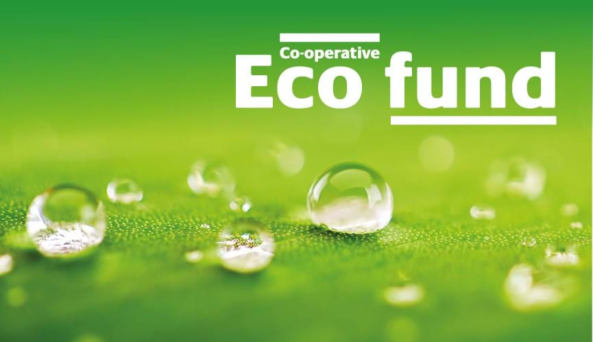 What is the Eco Fund and how does it work?