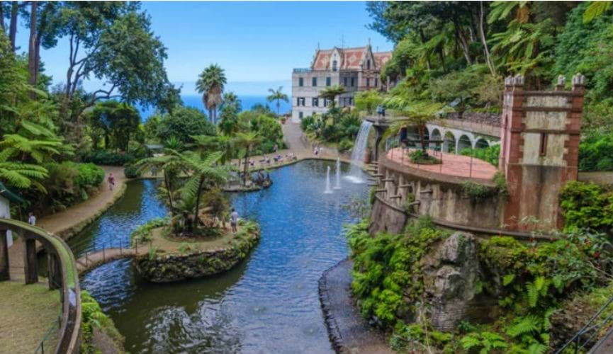 February Half Term Offers to Madeira