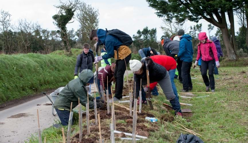 Help us plant 100 trees and shrubs and make a lasting impact on our local environment